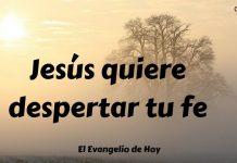 1 Jesús quiere despertar tu fe