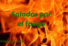 4 Salados por el fuego