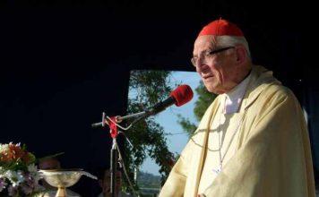 Cardenal Karlic