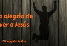 alegria ver Jesus